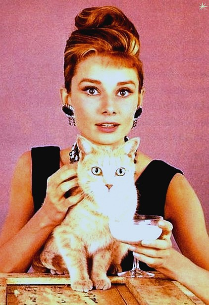 photo Audrey Hepburn telechargement gratuit