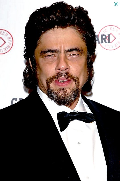 photo Benicio Del Toro telechargement gratuit