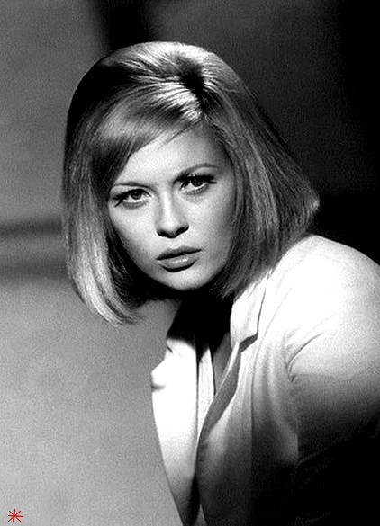 photo Faye Dunaway telechargement gratuit