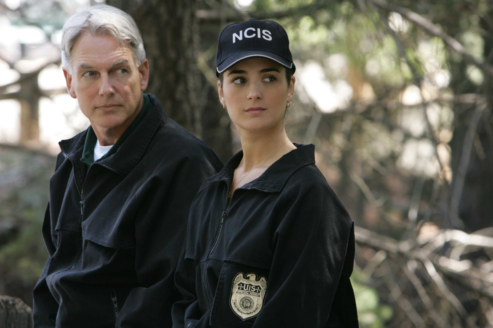 photo Mark Harmon telechargement gratuit