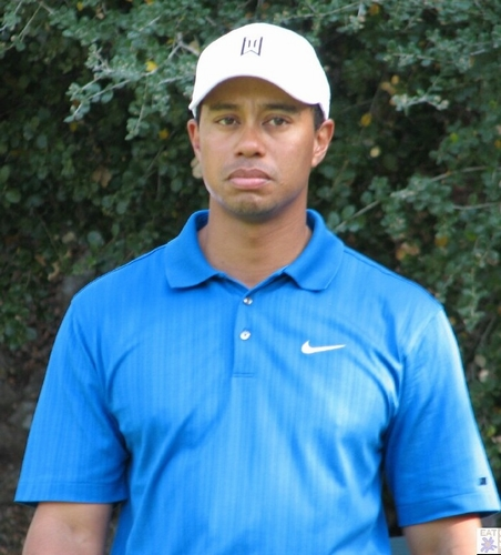 photo Tiger Woods telechargement gratuit