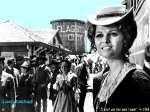 wallpaper Claudia Cardinale en telechargement gratuit