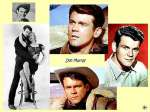 wallpaper Don Murray en telechargement gratuit