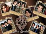 wallpaper Jonas Brothers en telechargement gratuit